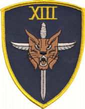 No. XIII (13) Squadron RAF Stabbed Cat Blue Shield Embroidered Patch